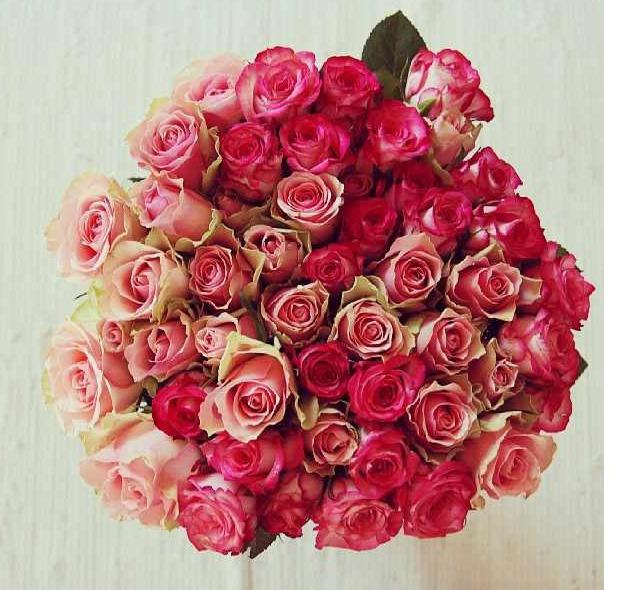floralfriday 064 (1).jpg