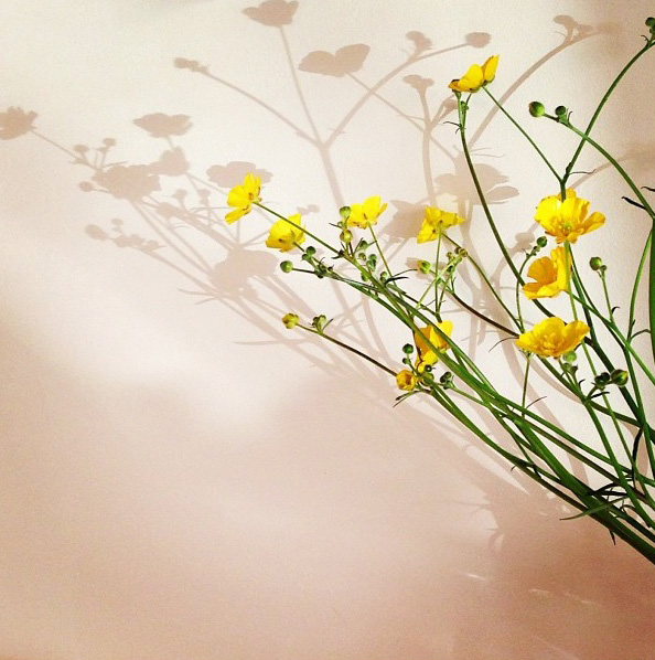 floralfriday 063 (1).jpg