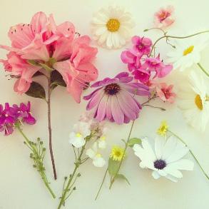 floraljune 014.jpg