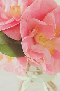 floraljune 010.jpg
