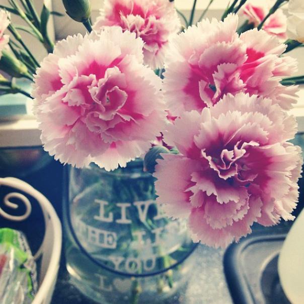 floraljune 016 (1).jpg
