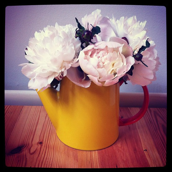 floraljune 015 (1).jpg