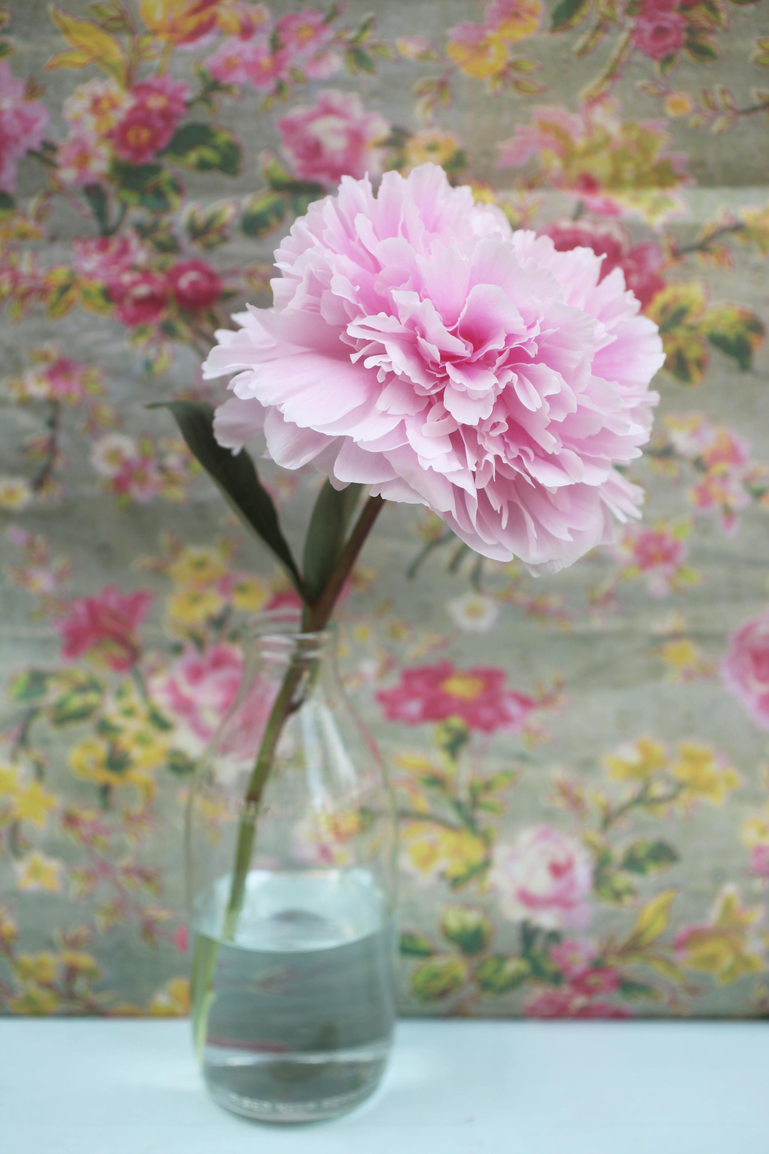 floralfriday 038.jpg
