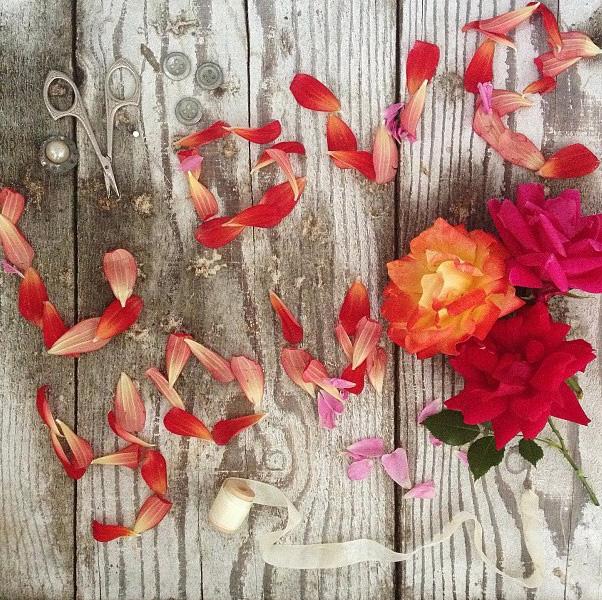 floralfridayjune21 001.jpg
