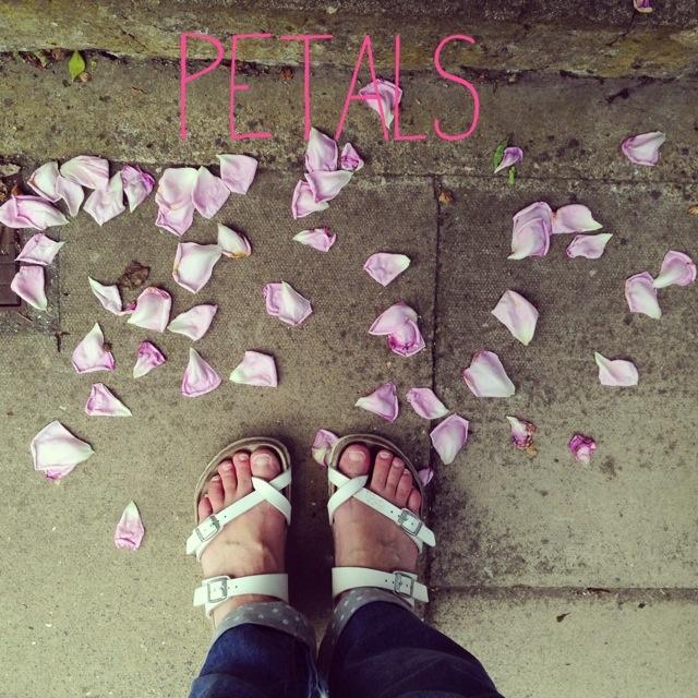 littlethings 010.jpg