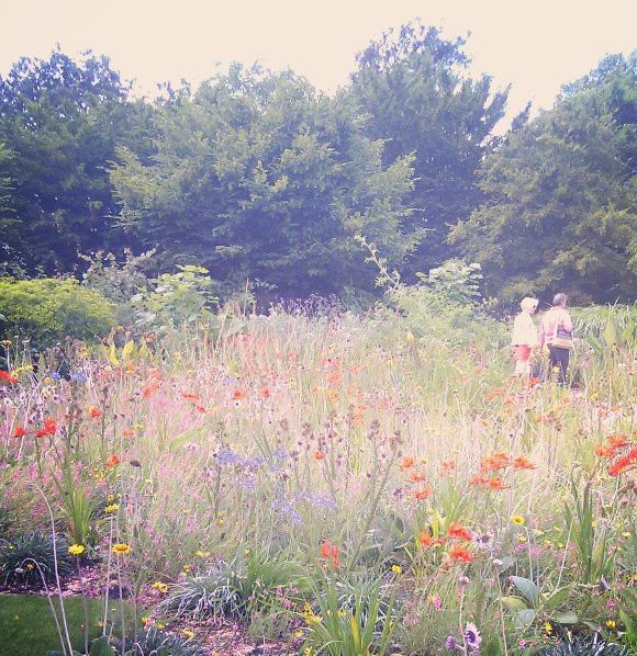 floralfridayaugust 021.jpg