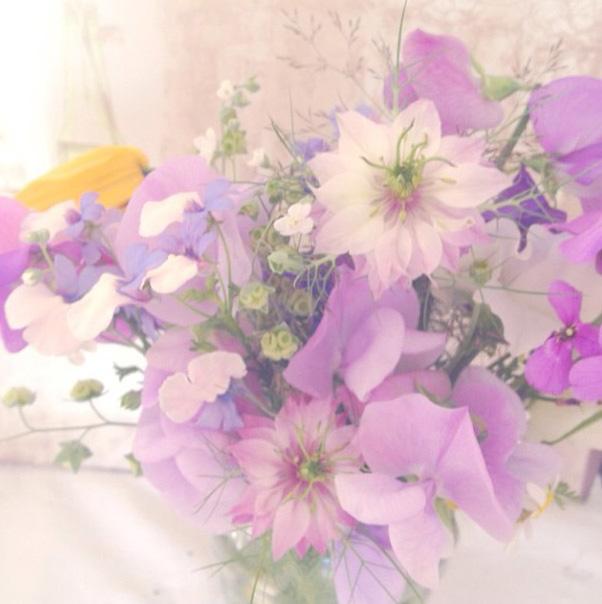 floralfridayaugust 033.jpg