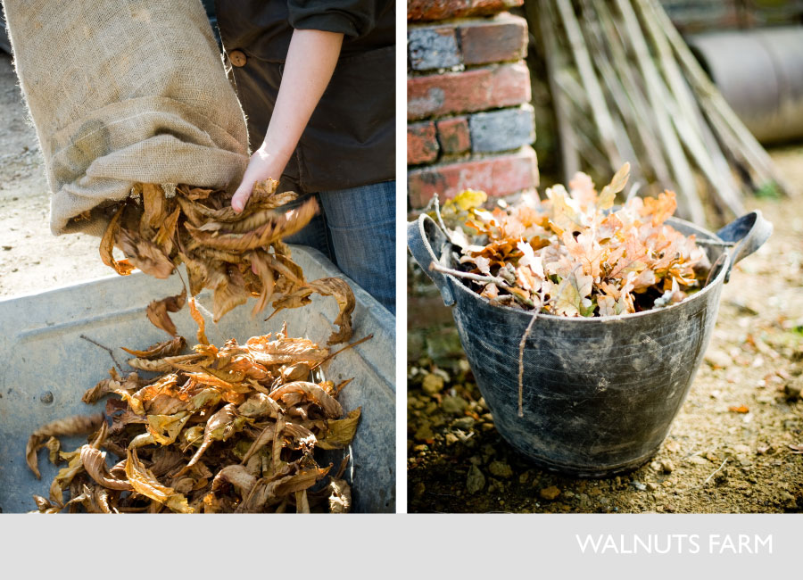 1986-walnuts-farm-film-and-photographic-shoot-location-house-props-dried-leaves-.jpg
