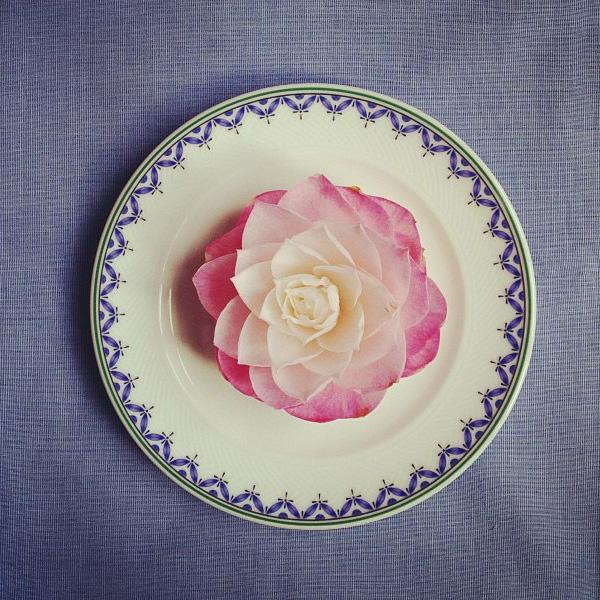 floralfridayaugust 048.jpg