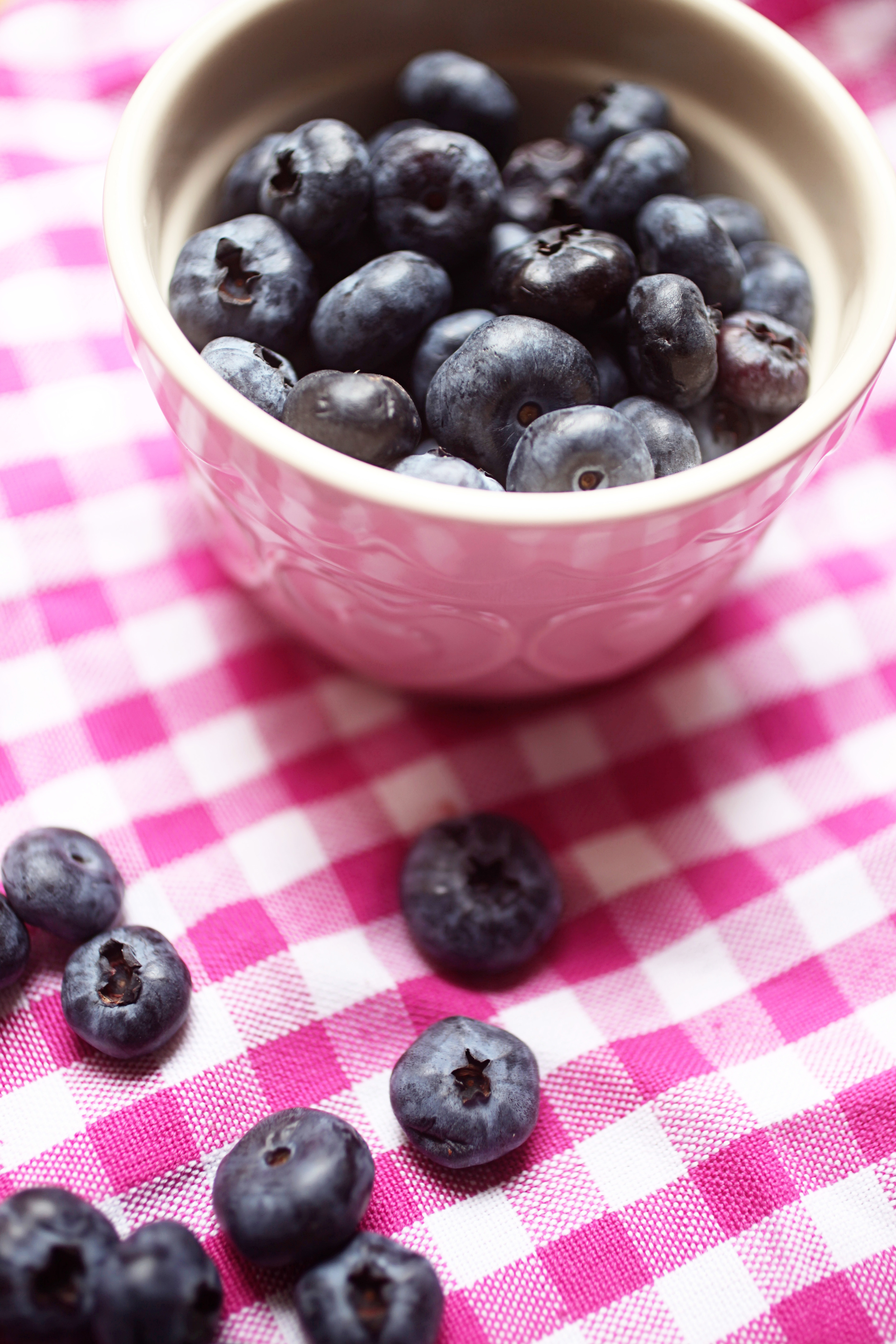 blueberrynectarineslice 004.jpg