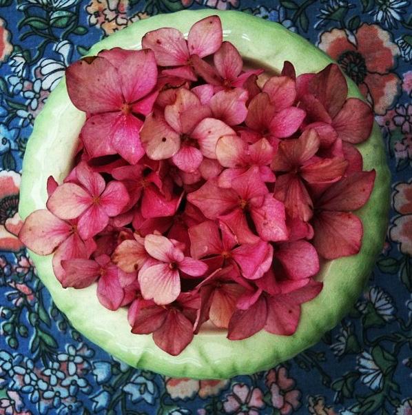 floralfridayseptember 002.jpg