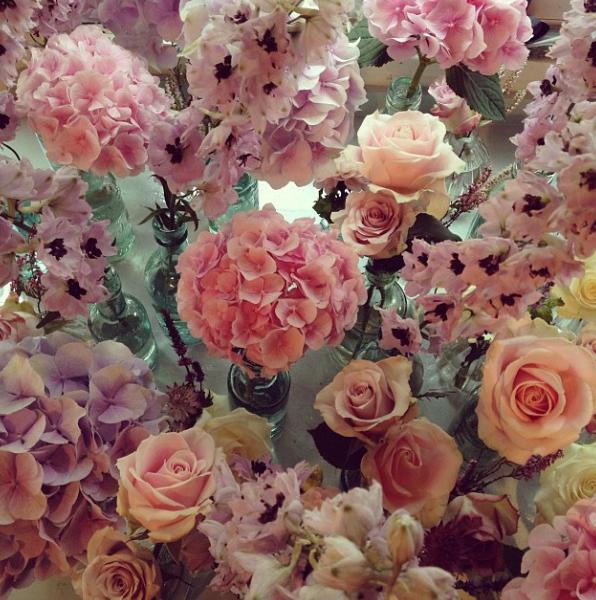 floralfridayoctober 003.jpg