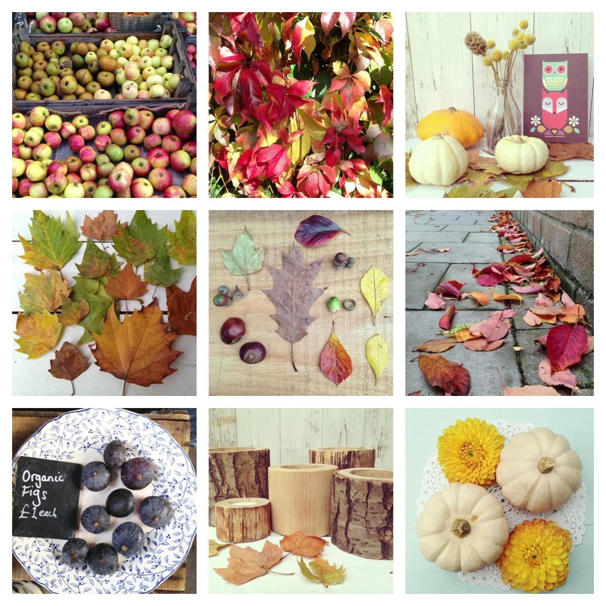 Autumn 016.jpg