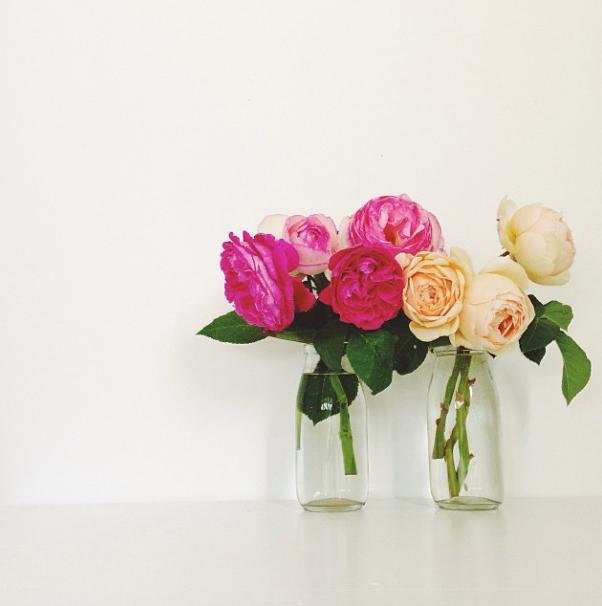 FloralFridayNovember01.jpg