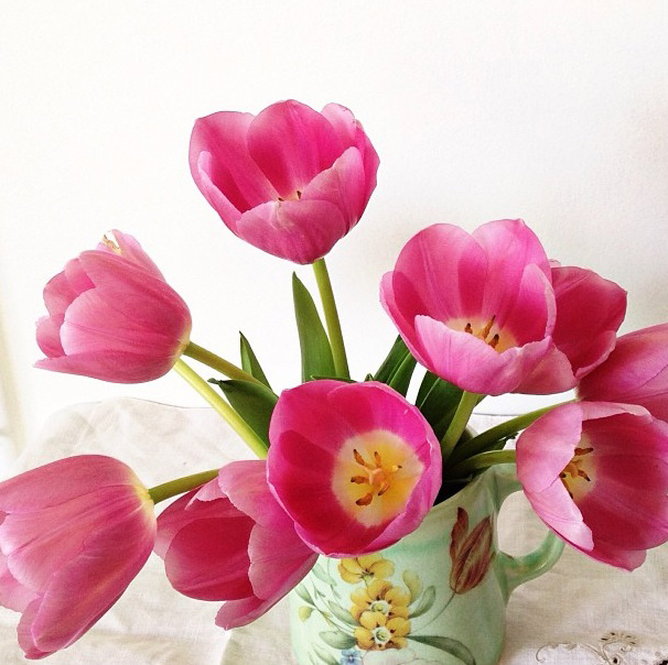 FloralFridayNovember 005.jpg
