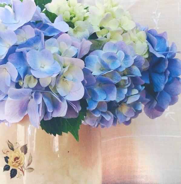FloralFridayNovember 041.jpg