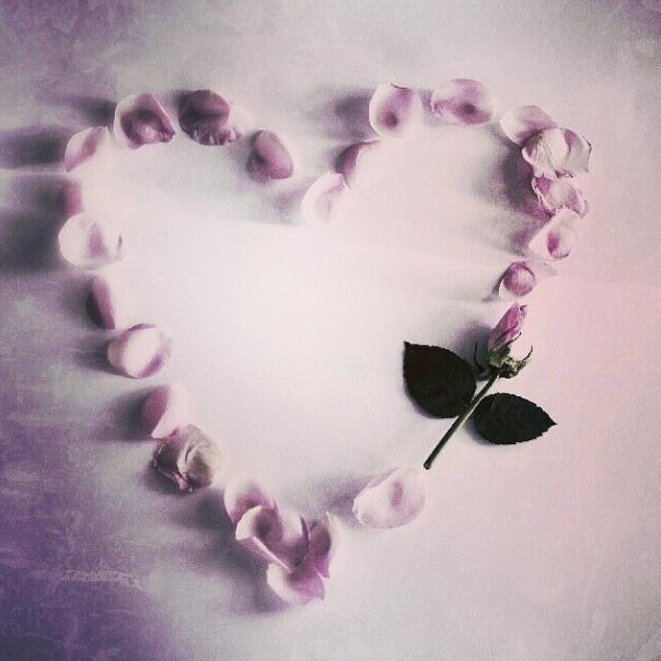 FloralFridayNovember 043.jpg