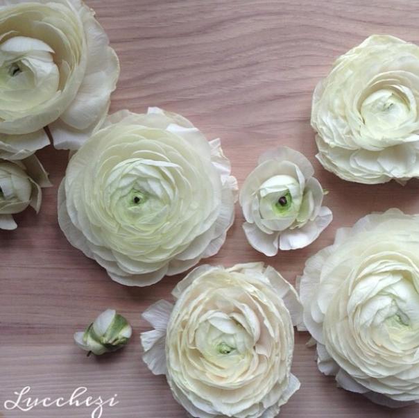 FloralFridayDecember 002.jpg