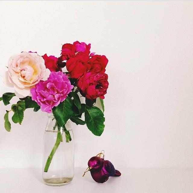 FloralDecember 014.jpg