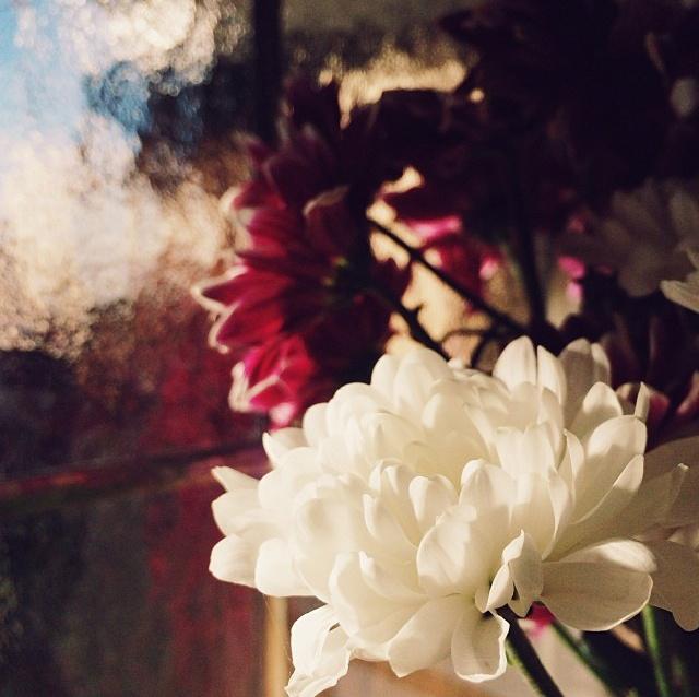 floraljan 034.jpg