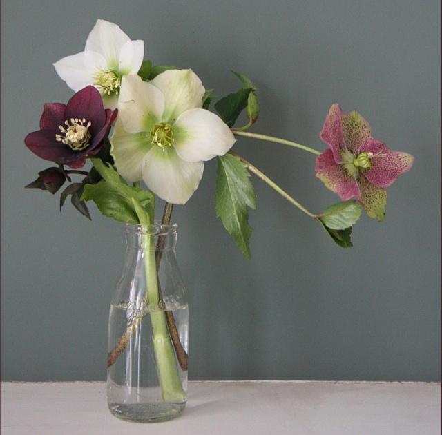 floraljan 82.jpg