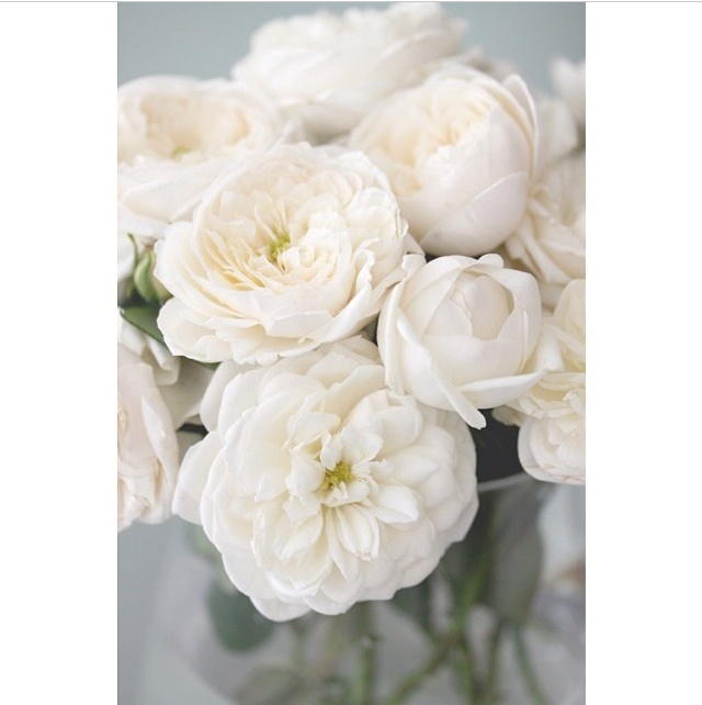 floraljan 94.jpg