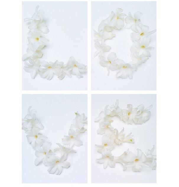 FloralFeb 38.jpg