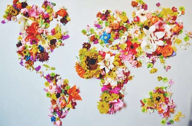 World of Flowers by @unamorita on Instagram