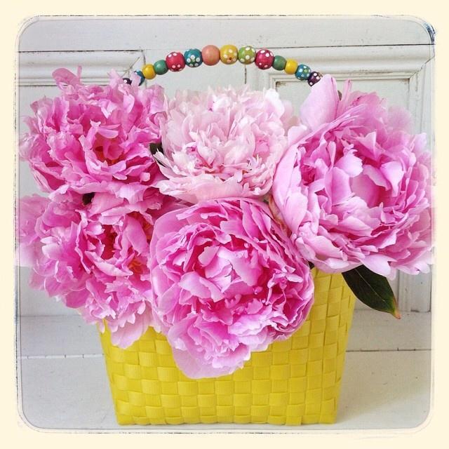 FloralFridayJune 36.jpg