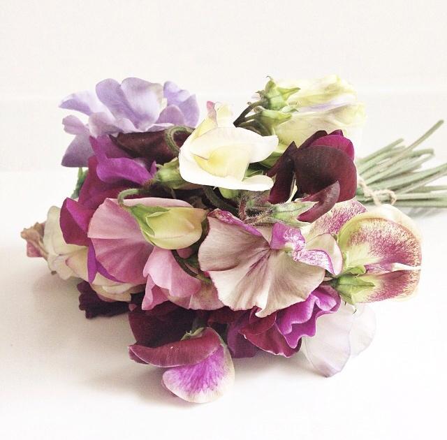FloralFridayJune 37.jpg