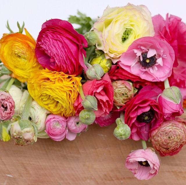 FloralAugust 8.jpg