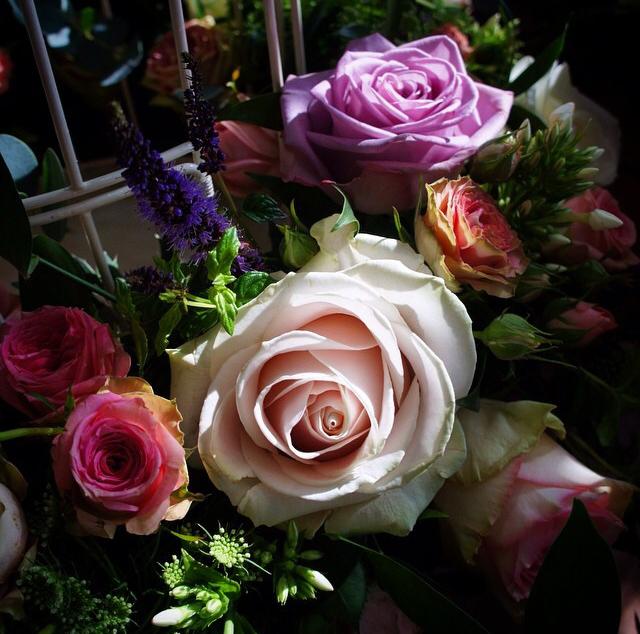 FloralOctober 24.jpg