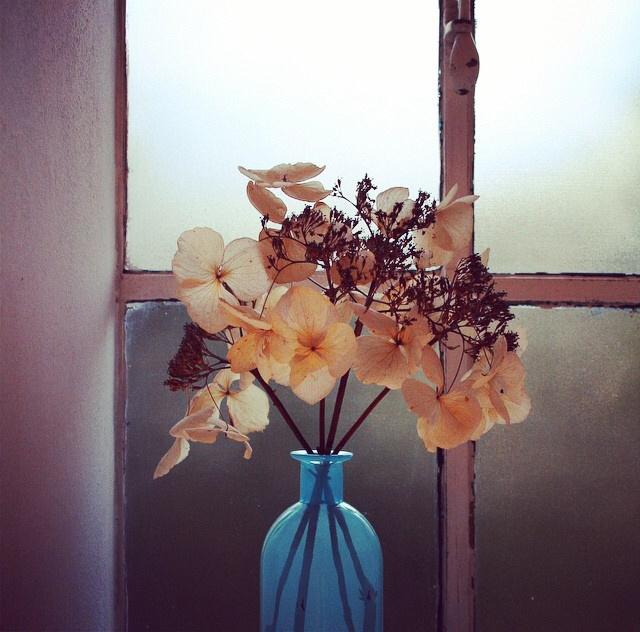 FloralOctober 25.jpg