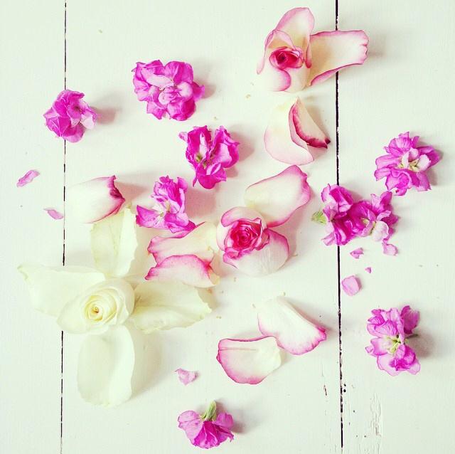 FloralOctober 26.jpg
