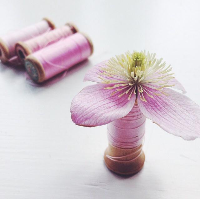 FloralOctober 32.jpg