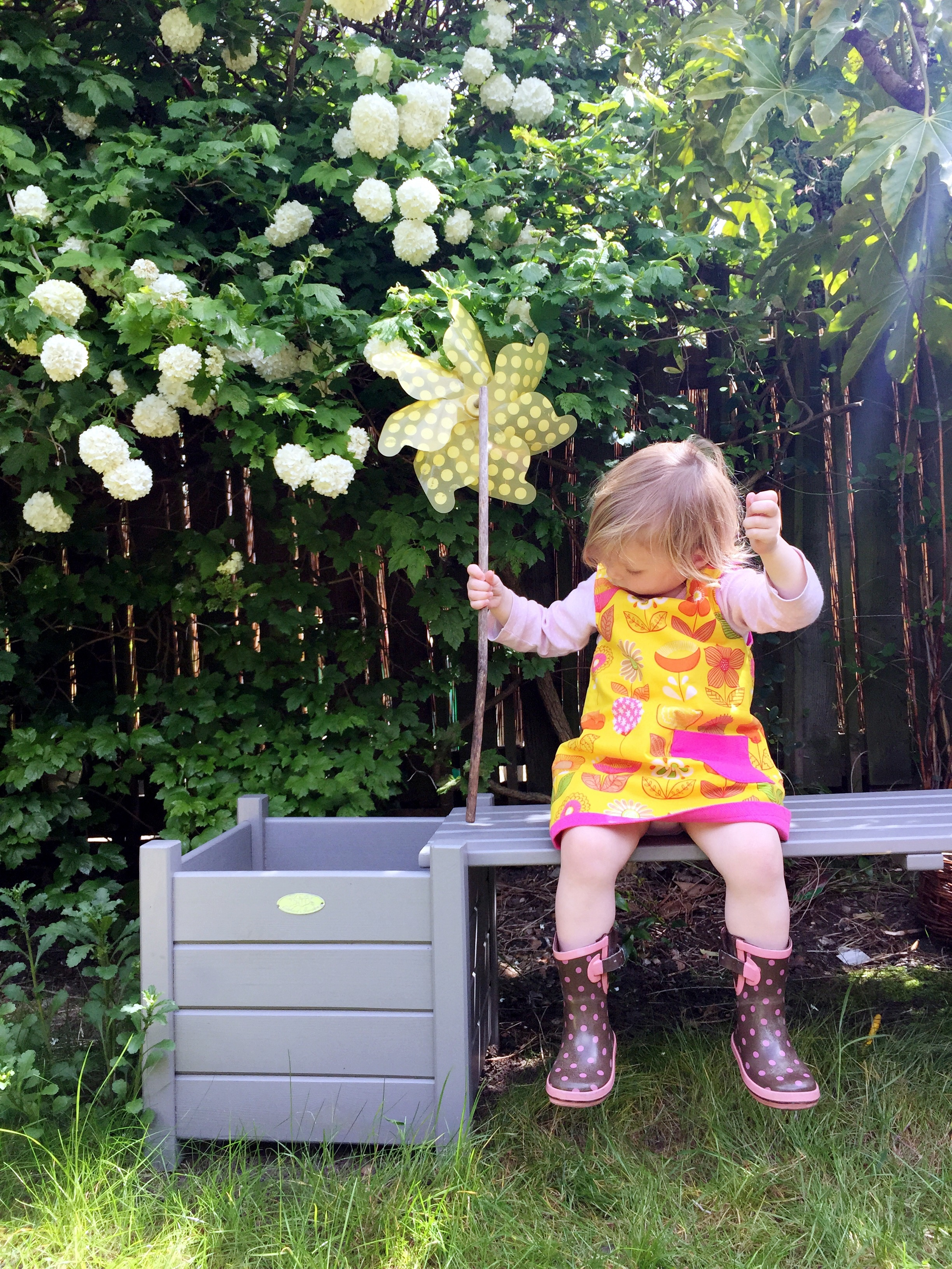 Wild Things : Funky Little Dresses