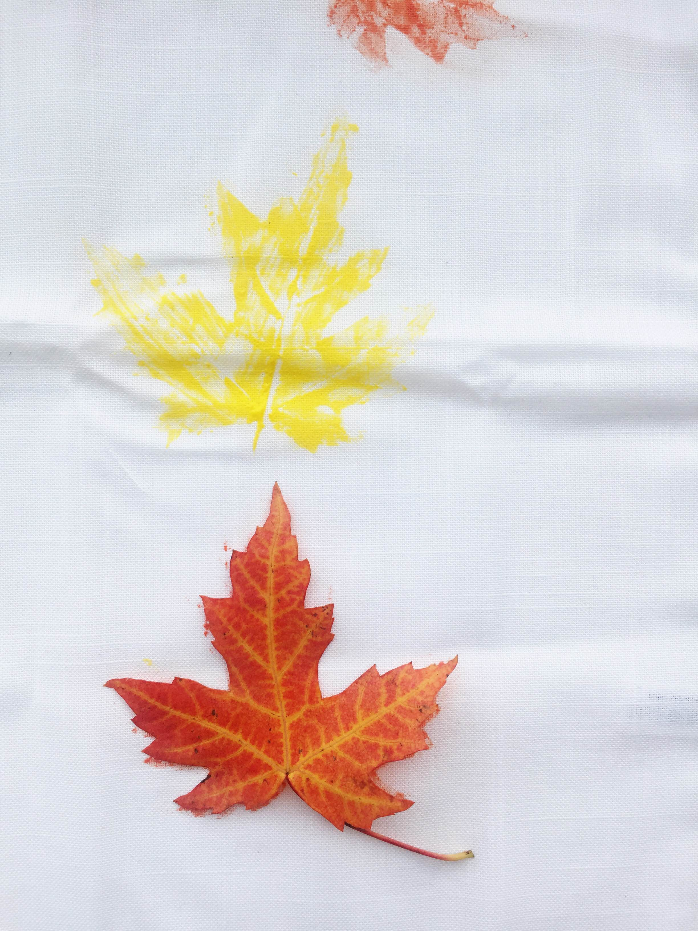 Printing with Fallen Leaves   Makelight