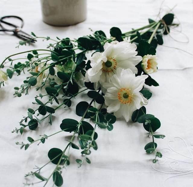 Floral Friday Winner   Makelight