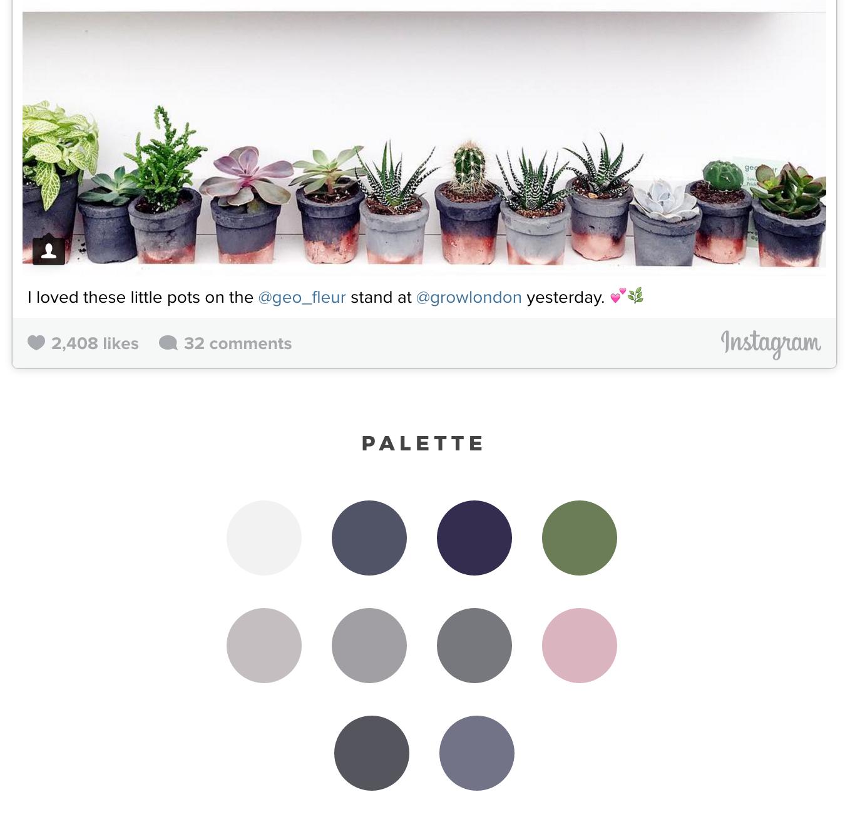 insights-mini-palette