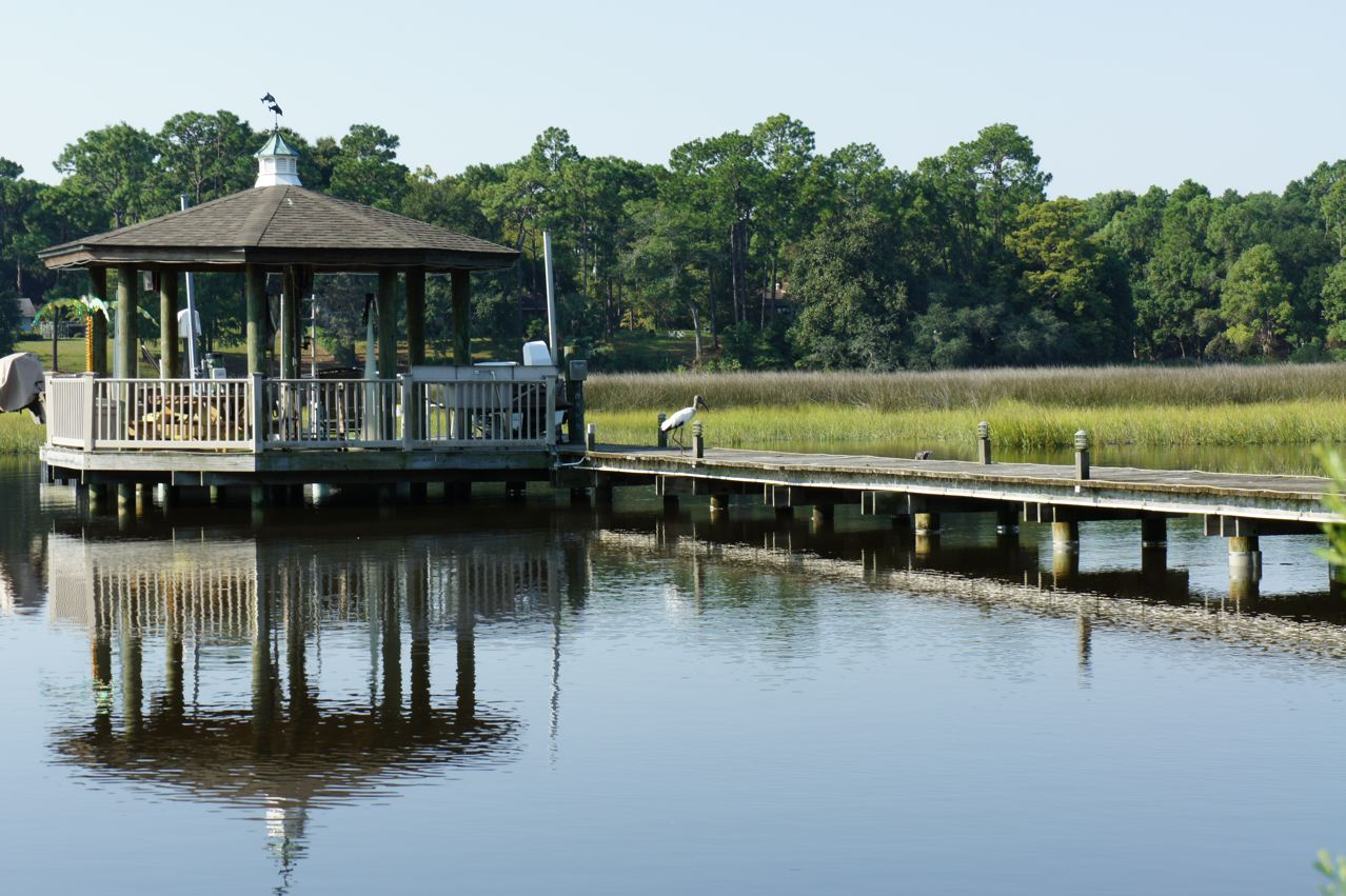 The neighbor's dock and visiting stork.