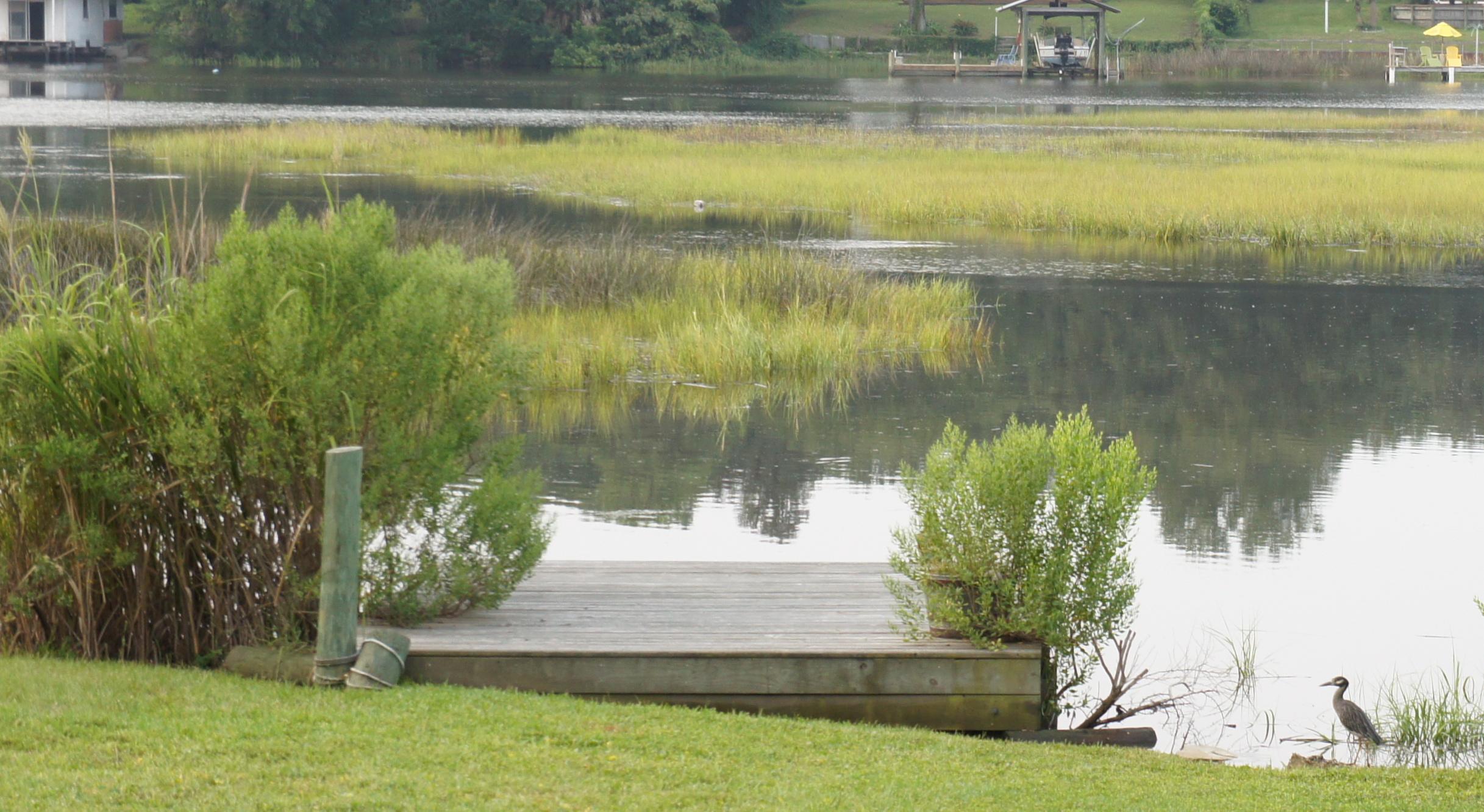 "My"" bird studio"" dock on the Broward"