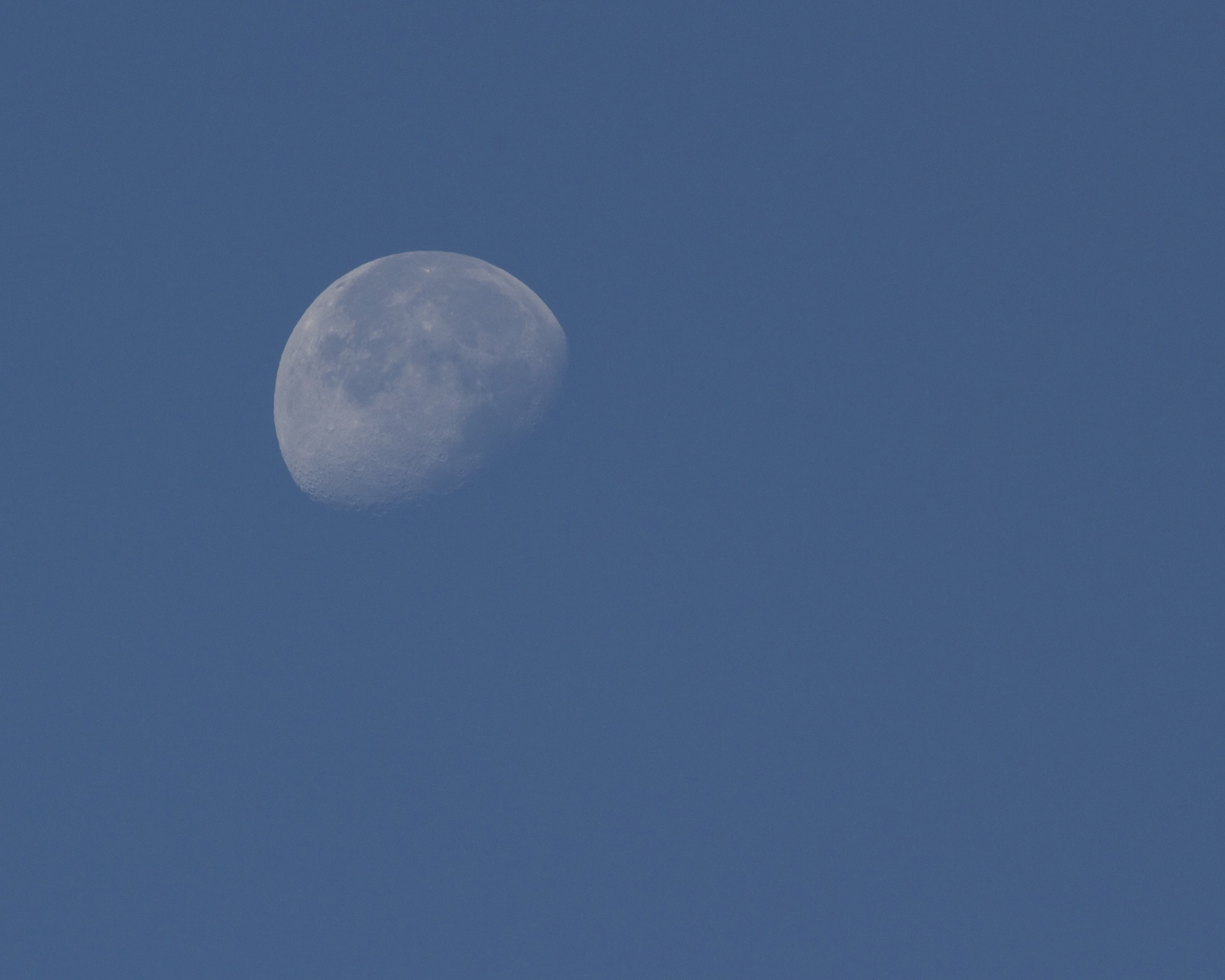 The waning moon shines in the early morning sky.