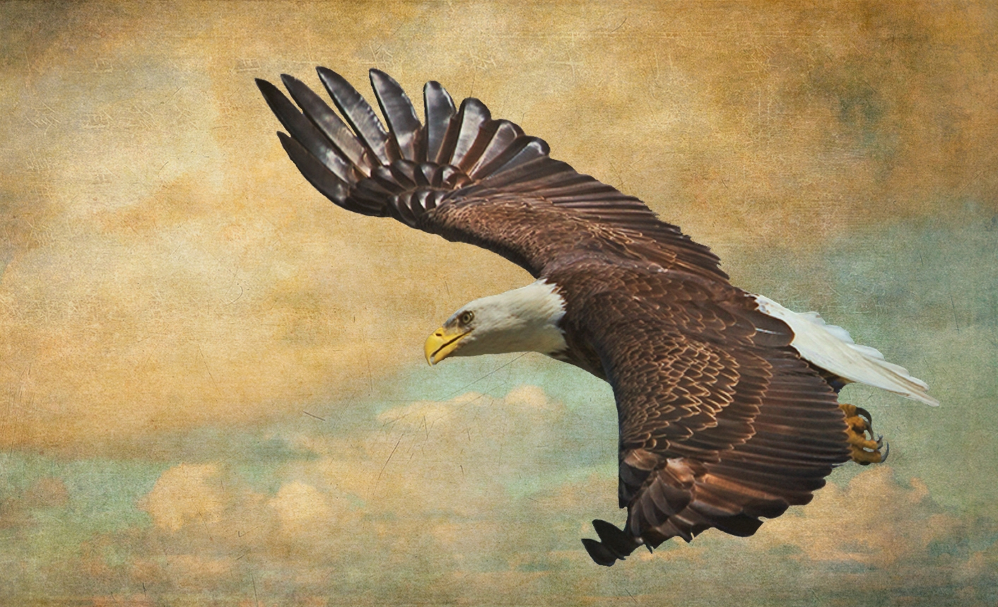 I call this one Vintage Eagle..similar technique using antique wall and sky overlays in layers.
