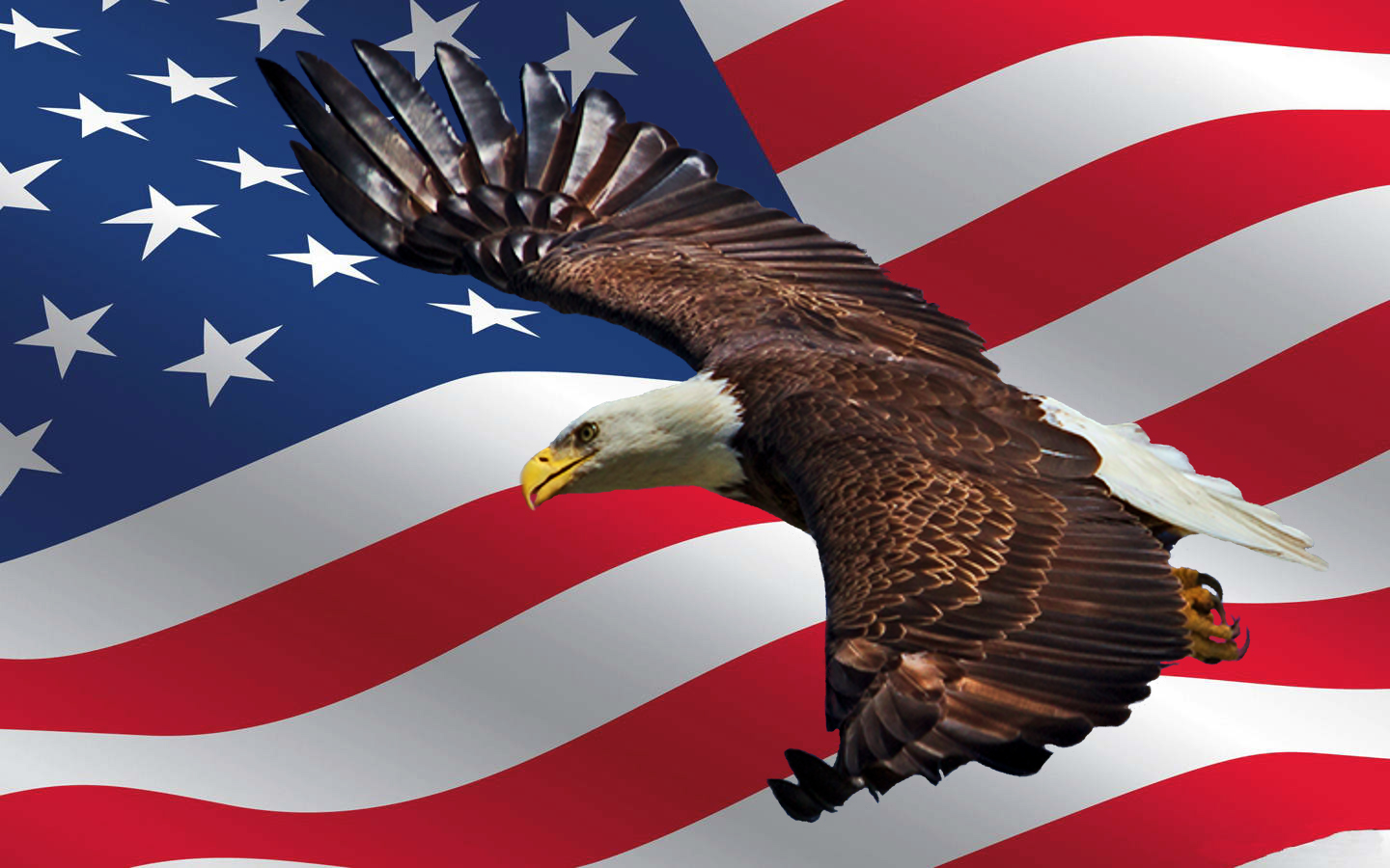 Bring back the true SPIRIT OF AMERICA before it is too late..