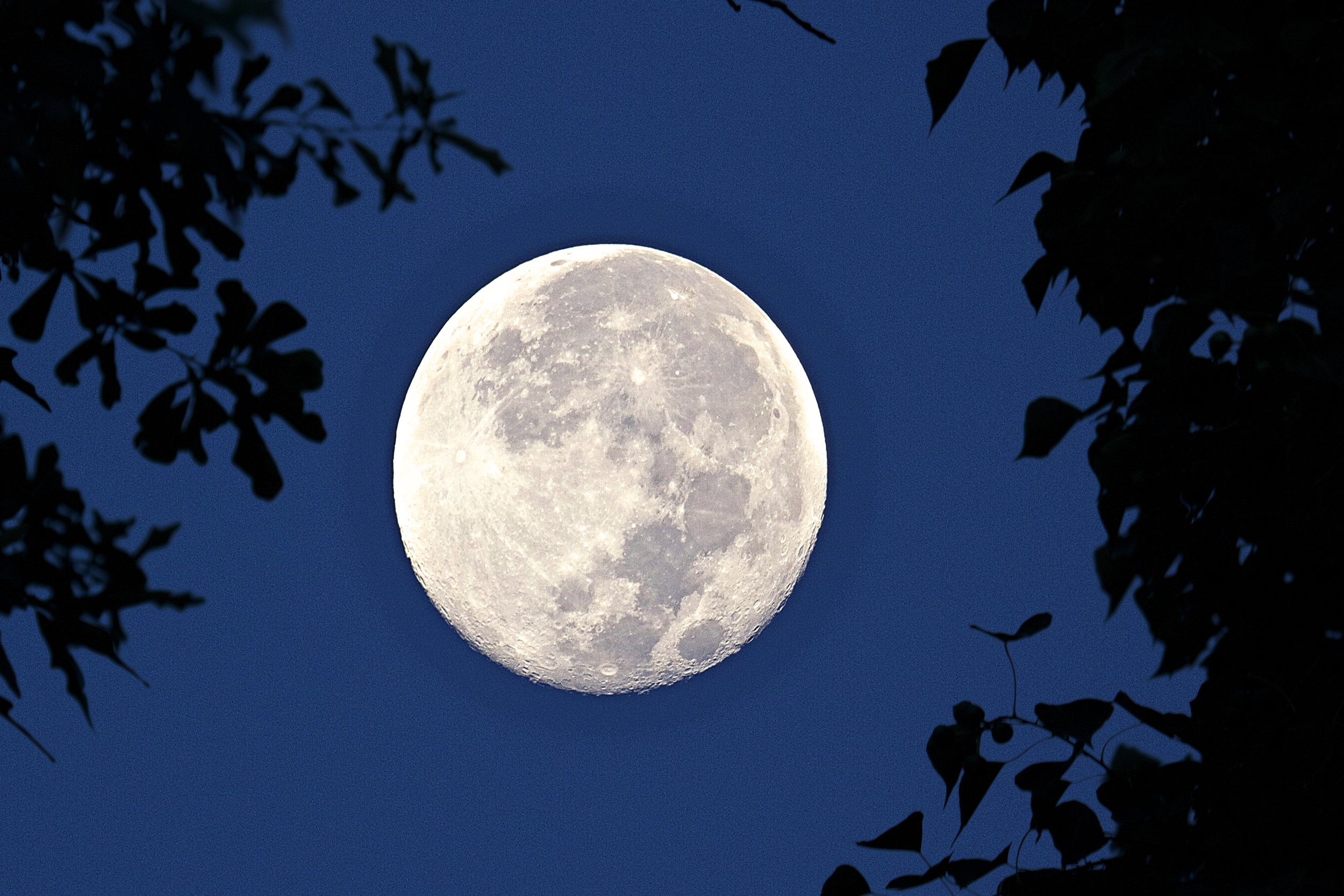 It was a full Harvest moon setting early one September morning over the Broward.. It