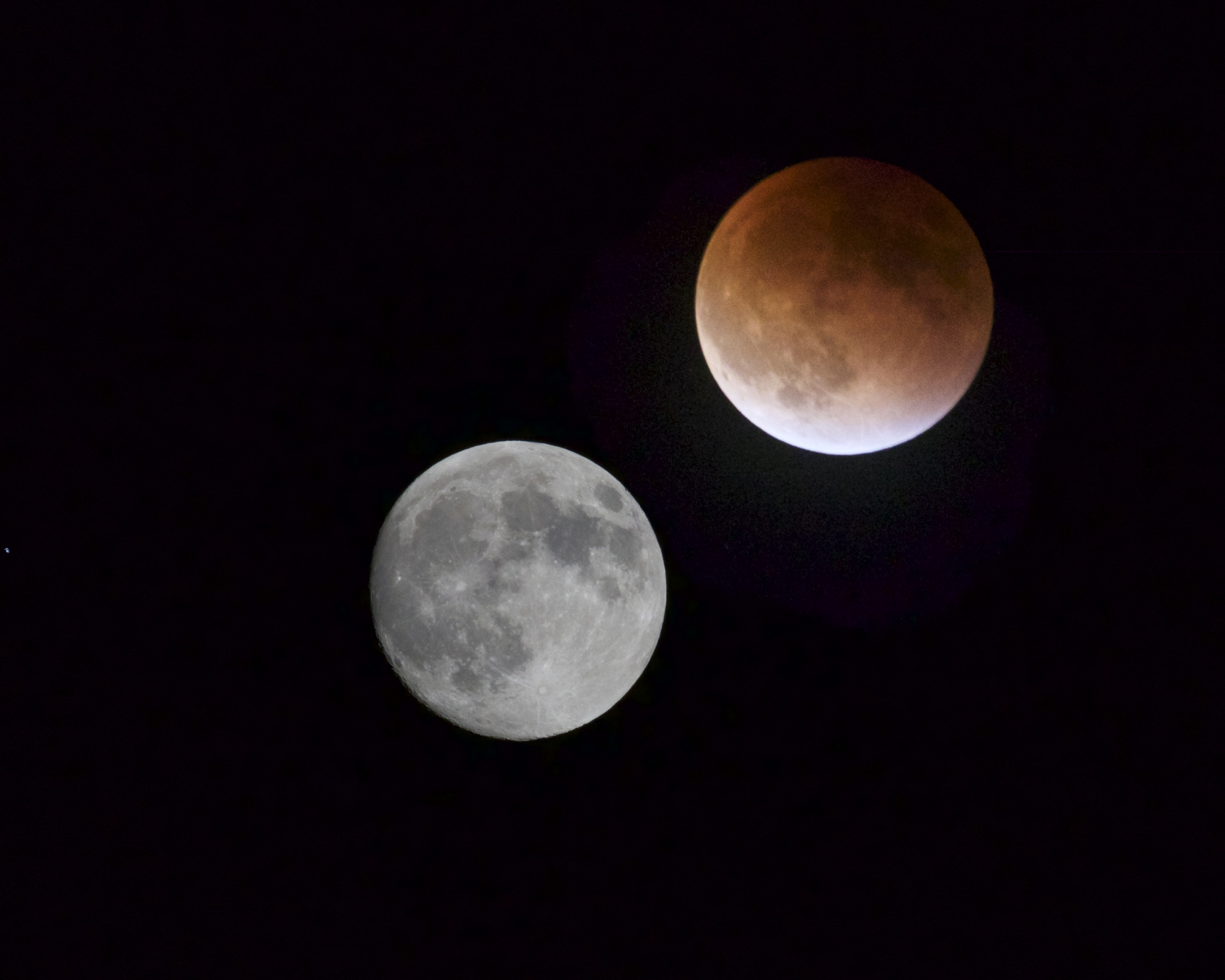A Blood Moon rises over the Broward..what will this sign mean I wonder?