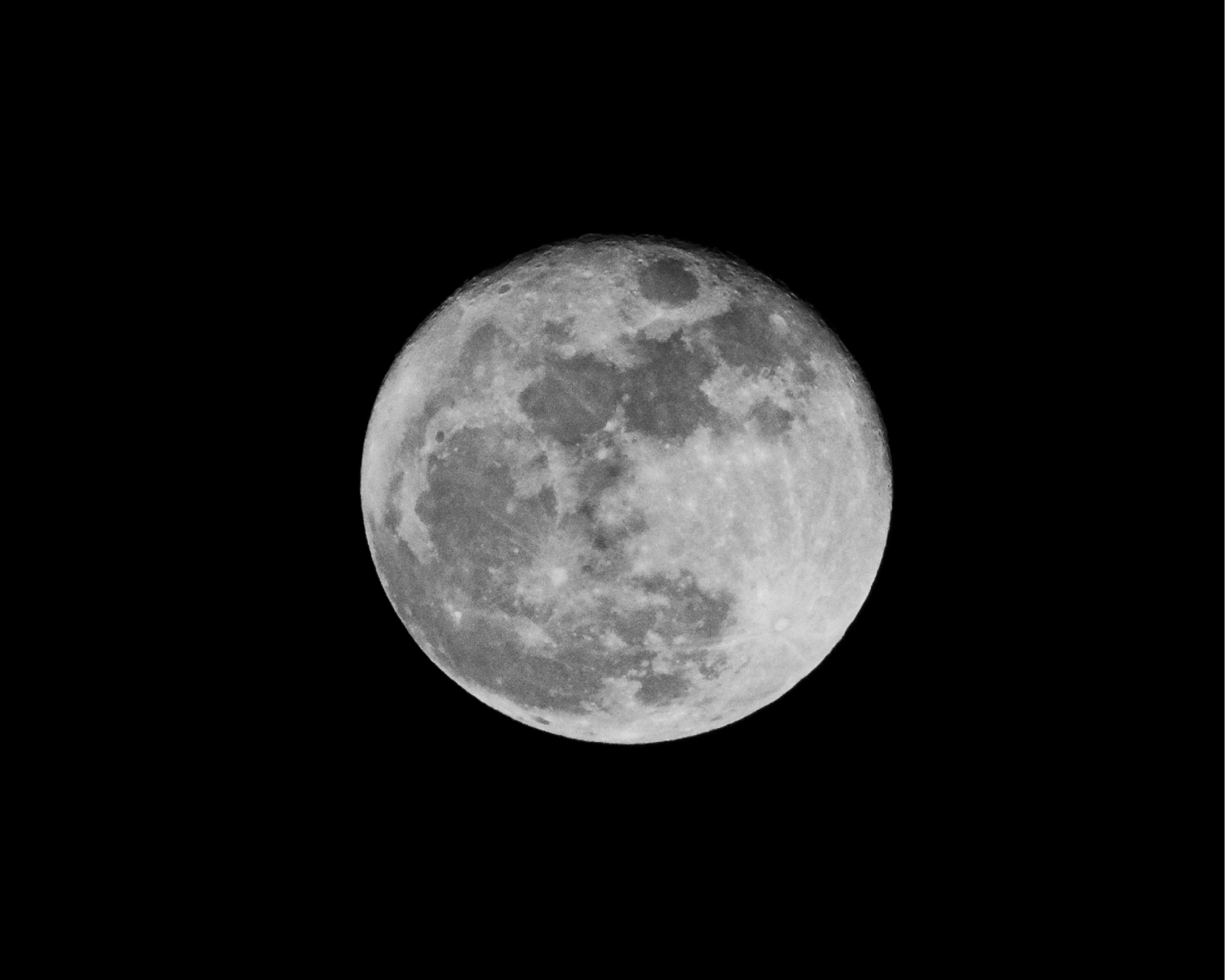 A full Thanksgiving moon was indicative of all the full tummies that day!