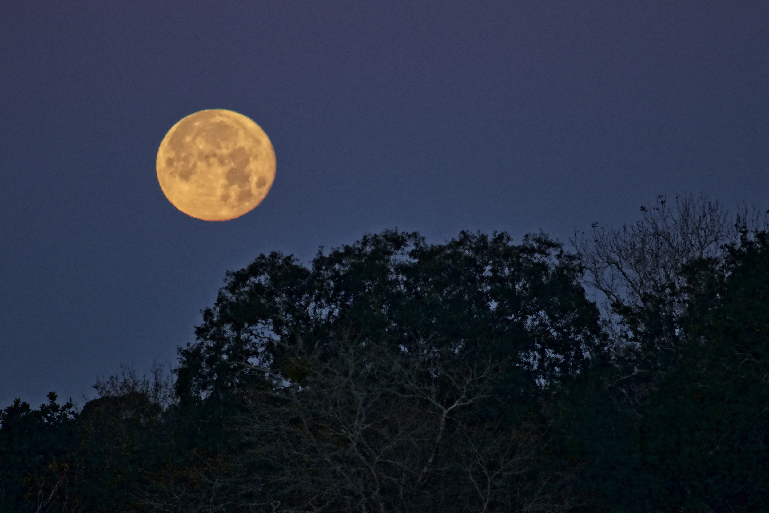 My attempt at Blue Hour on the Broward, Full moonset prior to dawn..