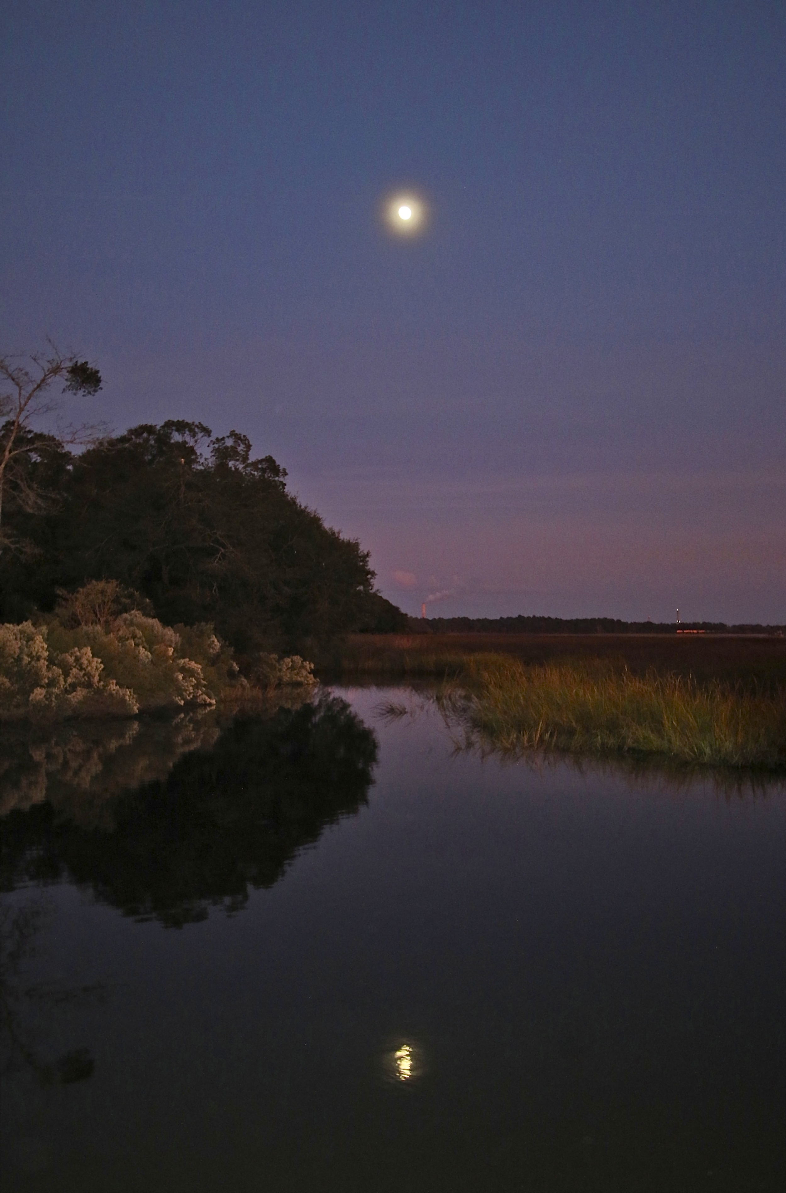 Moon reflects over the Broward at Dusk..Saltbushes in bloom..