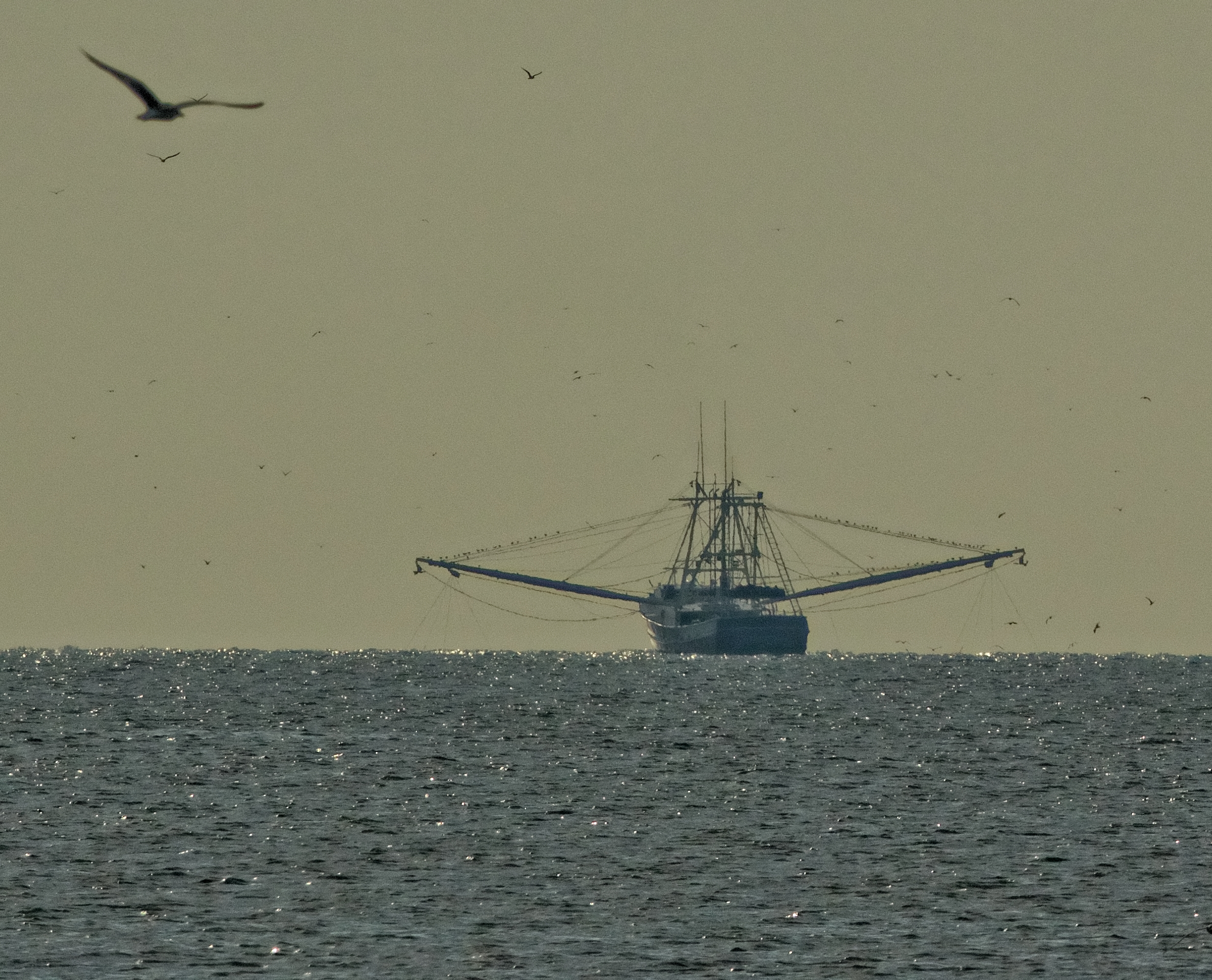 It is now officially summer and it sure feels like it...Mayport Shrimper on a lazy hazy summer day.